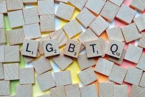 LGBT Koalition